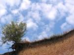 PICT0449 150x112 The Scenery Begins (картинки). Факты биографии Yiruma.
